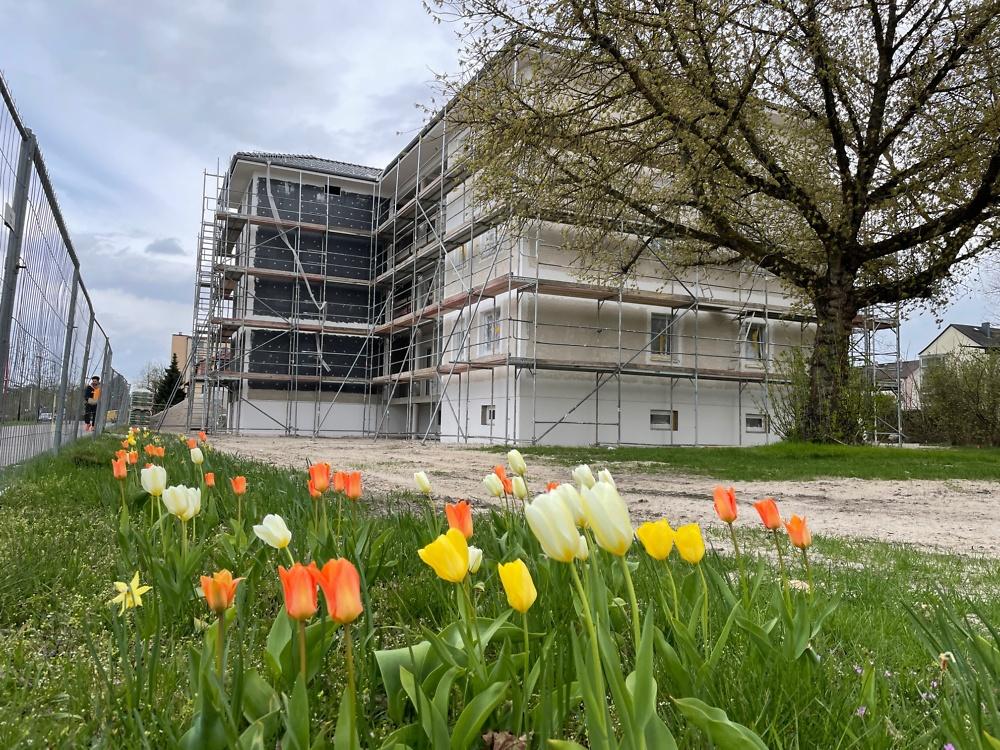 April 2021 - Frühling auf der Baustelle